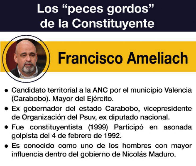 CONSTITUYENTE FRANCISCO AMELIACH