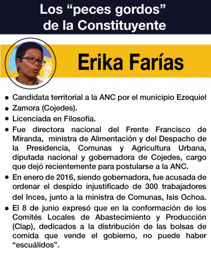 CONSTITUYENTE ERIKA FARIAS